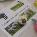 Sheep cakes